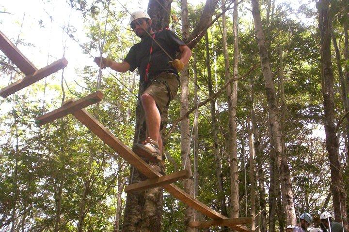 Canopy Malacahuello