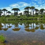 Reserva Malacahuello